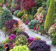 Faire Une Dalle Béton Pour Abri De Jardin Frais Allées De Jardin originales En 48 Idées Inspirantes