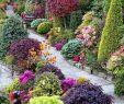 Faire Une Dalle Béton Pour Abri De Jardin Luxe Allées De Jardin originales En 48 Idées Inspirantes