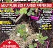 """Fourmis Dans Le Jardin Nouveau Alain Delavie On Twitter """"chaque Semaine Dans Le Magazine"""