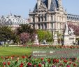 Jardin Du Louvre Best Of Jardin Du Luxembourg In Paris France High Res Stock