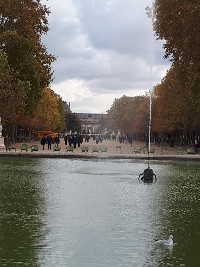 paris jardin des tuileries to arc du carrousel louvre nov19