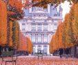 Jardin Du Louvre Frais 📍paris is Moveable Feast 📍bienvenue  Paris & L Automne