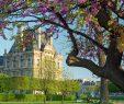 Jardin Du Louvre Frais Springtime In Paris
