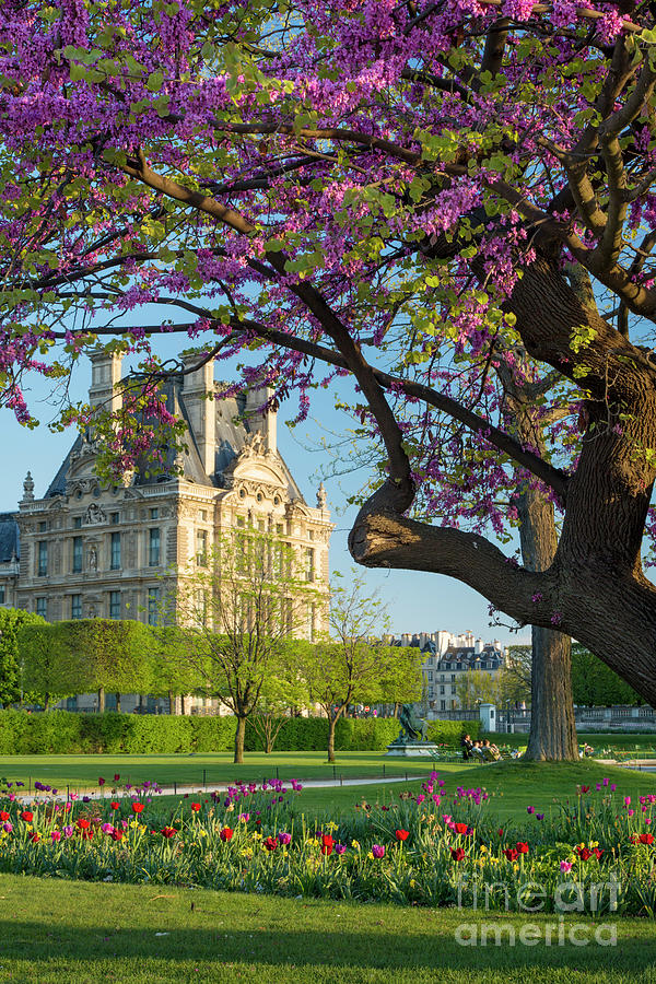 1 springtime in paris brian jannsen