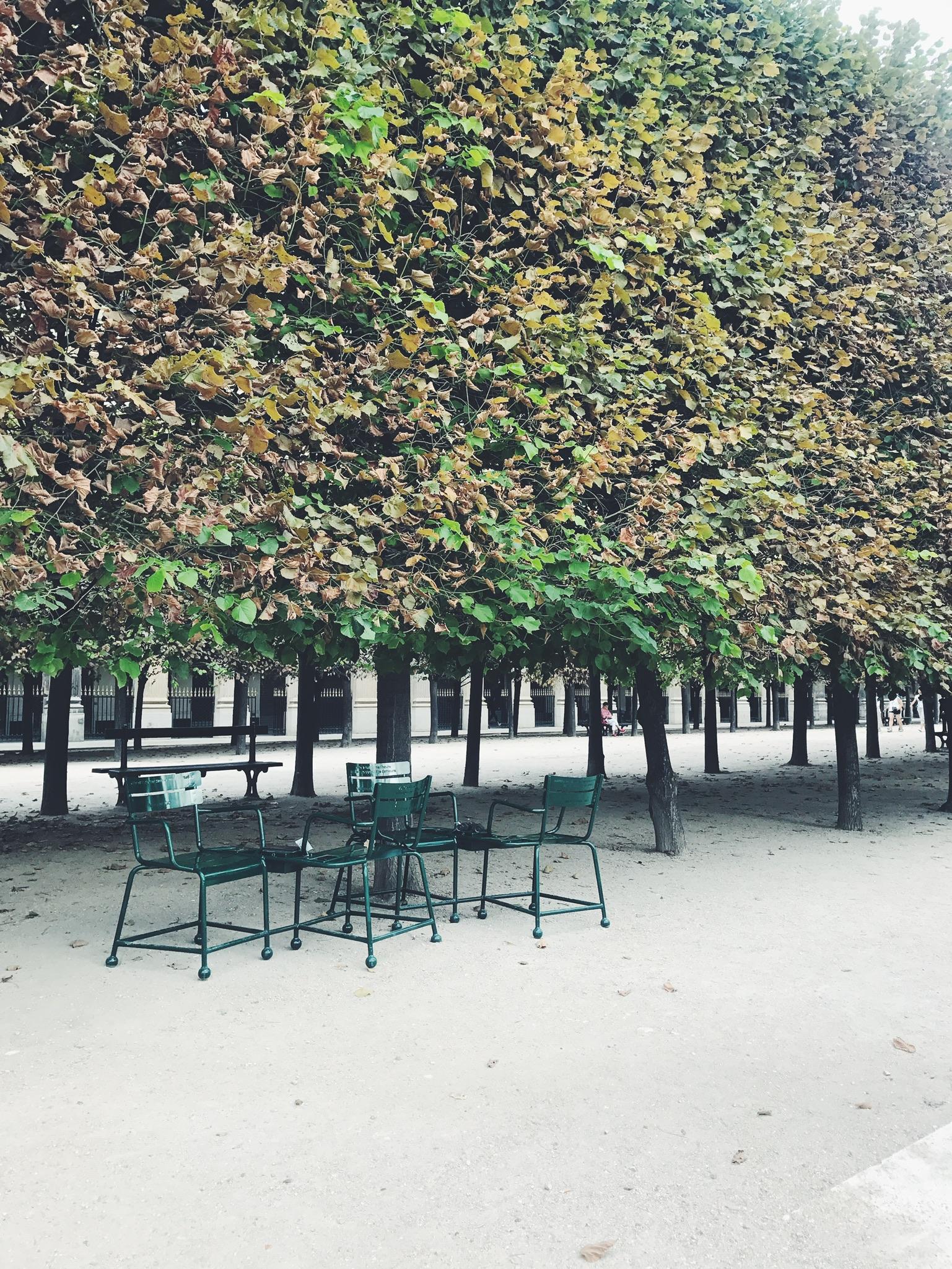 Jardin Du Louvre Frais Travel Blog