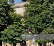 Jardin Du Louvre Génial Jardin Du Caroussel Du Louvre 19 Juin 2015 Paris 1er