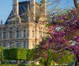 Jardin Du Louvre Génial Springtime In Jardin Des Tuileries with Musee Du Louvre