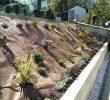 Jardin En Pente solution Charmant Amĩnager Un Jardin En Pente Amenager Un Talus S tout