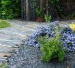 Jardin En Pente solution Élégant Idées D Aménagement De Bardages Brise Vue Et Cl´tures De Jardin