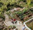 Jardin En Pente solution Génial Fun and Food In Home Grown Ve Able Gardening