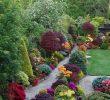 Jardin Paysager Moderne Best Of Design De Jardin Moderne 110 Idées Inspirantes En Images