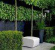 Jardin Paysager Moderne Best Of Ment Aménager son Jardin Paysager Moderne