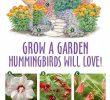 Le Jardin Des Papillons Beau Buy Gardening Supplies Gardeningathome Post