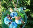 Le Jardin Des Papillons Best Of Des Papillons Dans Votre Jardin C Est Magnifique attirez