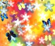 Le Jardin Des Papillons Charmant Mon Jardin Des Papillons Pour android Téléchargez L Apk