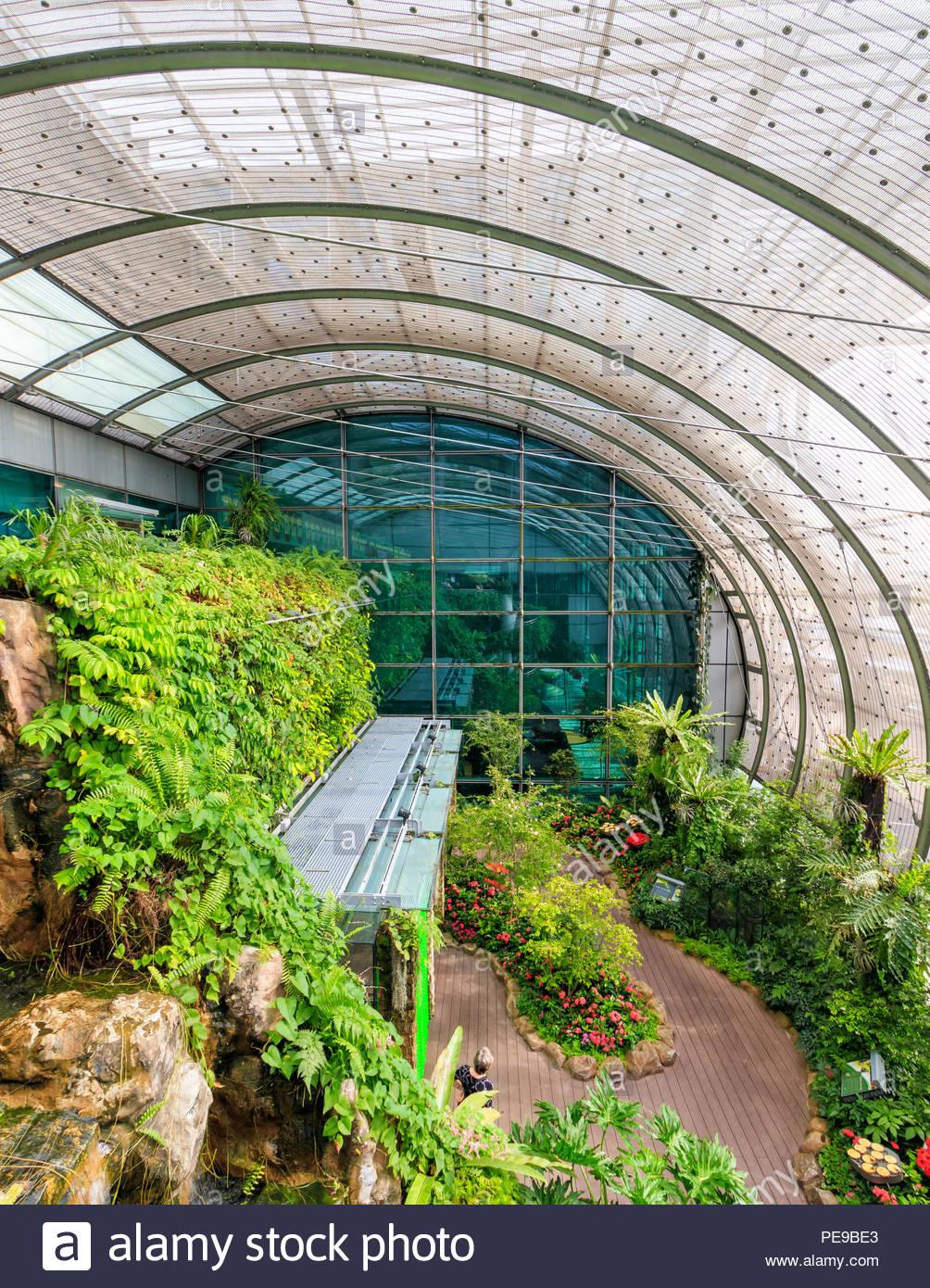 singapour le 26 juillet 2018 le jardin des papillons a l aeroport de singapour changi pe9be3