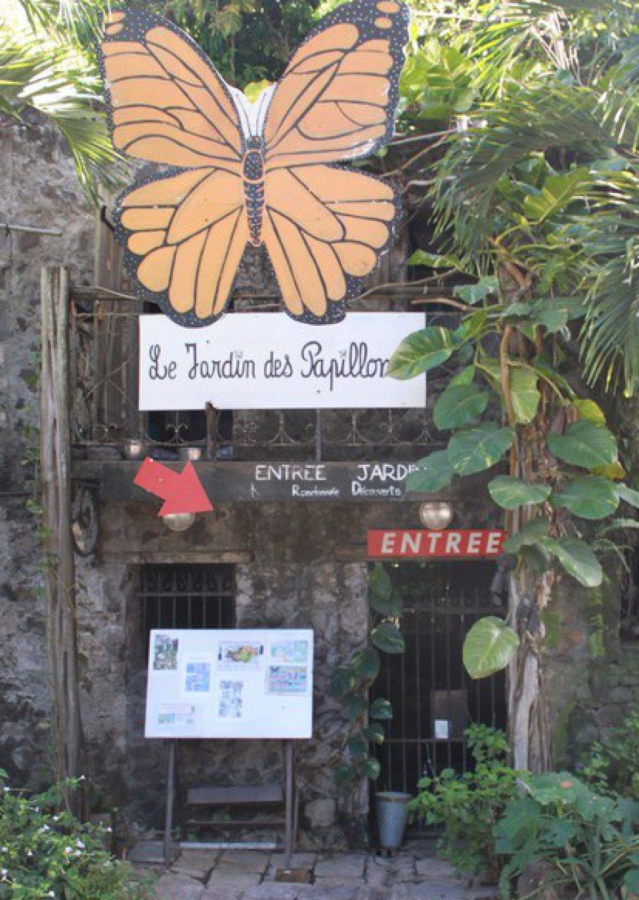 Le Jardin Des Papillons Frais Le Jardin Des Papillons Carbet Martinique