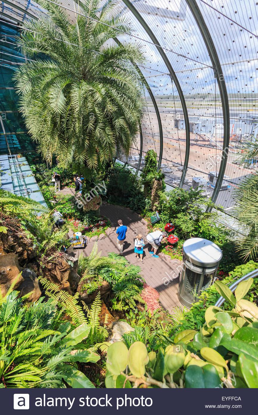 photo image le jardin des papillons a changi l aeroport international de singapour ce jardin a l aerogare 3 est l un des quatre jardins dans l aeroport