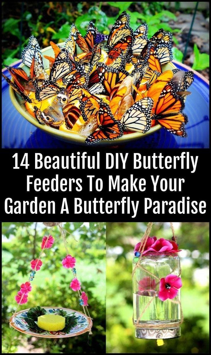 Le Jardin Des Papillons Inspirant 14 Magnifiques Mangeoires  Papillons Pour Faire De Votre