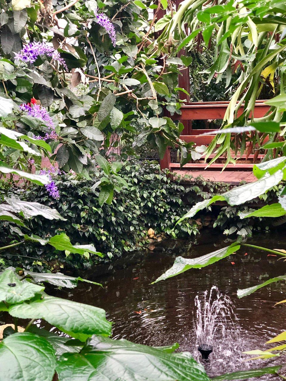 Attraction Review g d Reviews Jardin Des Papillons Grevenmacher