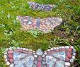 Le Jardin Des Papillons Luxe Allées De Jardin Créatives Pour Votre Extérieur