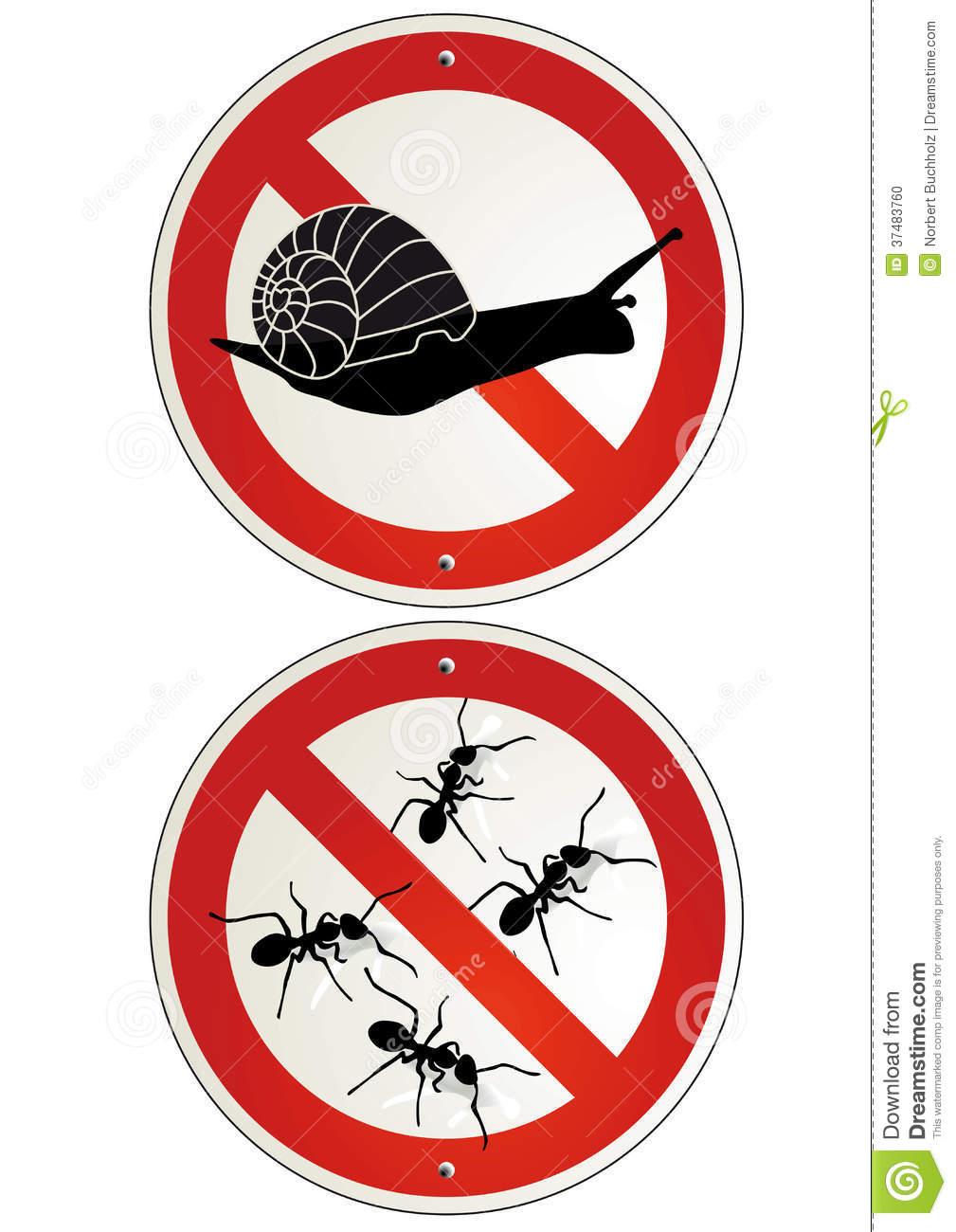 Lutter Contre Les Fourmis Au Jardin Beau Aucun Signes De Jardin De Fourmis Ou D Escargots
