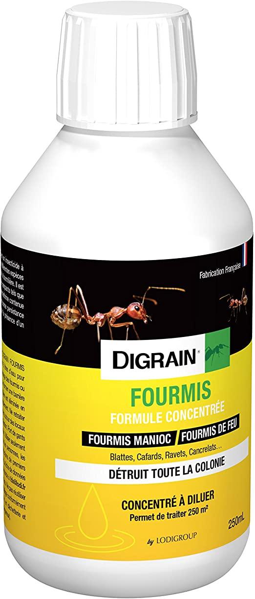 Lutter Contre Les Fourmis Au Jardin Élégant Digrain I1042 Fourmis formule Concentree Jaune 0 65 X 0 65