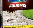Lutter Contre Les Fourmis Au Jardin Génial Fertilig¨ne Anti Fourmis Granulés 400 Gr