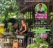 Lutter Contre Les Fourmis Au Jardin Inspirant Fleurmidable Dcm 2019 by Dcm issuu