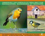 78 Frais Nourrir Les Oiseaux Du Jardin