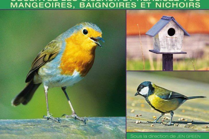 Nourrir Les Oiseaux Du Jardin Charmant Amazon attirer Et Nourrir Les Oiseaux Au Jardin Green