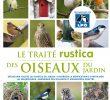 Nourrir Les Oiseaux Du Jardin Inspirant Oiseaux