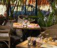 "Restaurant Coté Jardin Beau Terrace at the Restaurant ""c´té Jardin Stock"