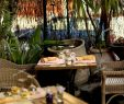 Restaurant Coté Jardin Best Of Terrace at the Restaurant C´té Jardin Stock Picture