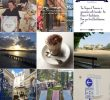 Restaurant Coté Jardin Nouveau 10 Favourite Paris & France Instagrammers