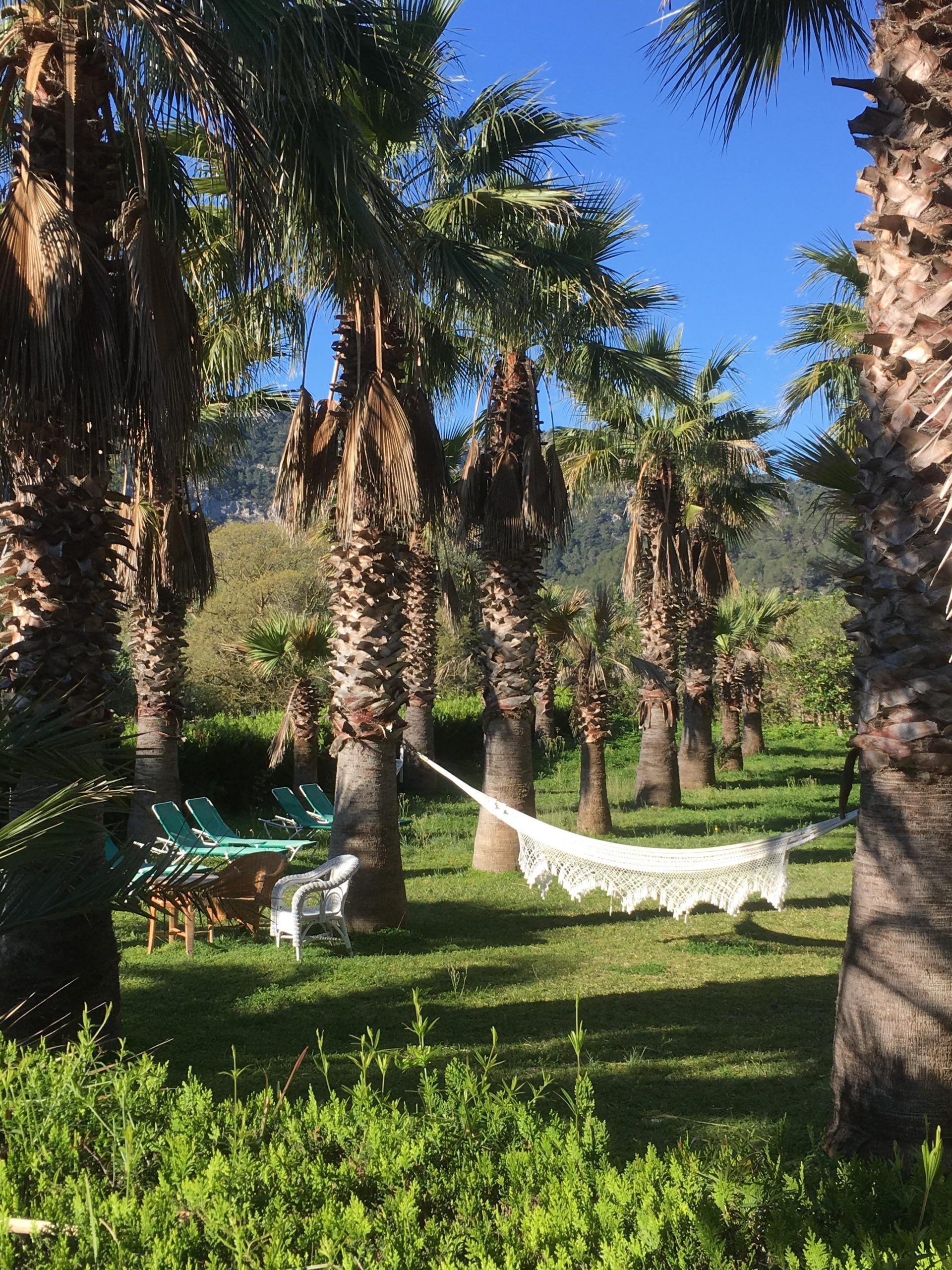 Puigpunyent Hotels Finca Hotel Son Pont h Hotel Information