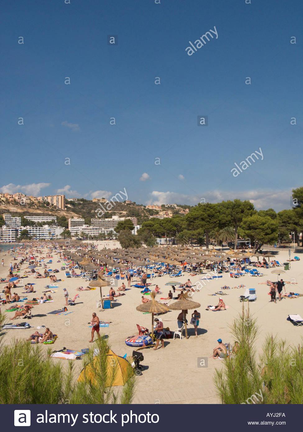 santa ponsa bay and beach scene ponent region majorca spain AYJ2FA