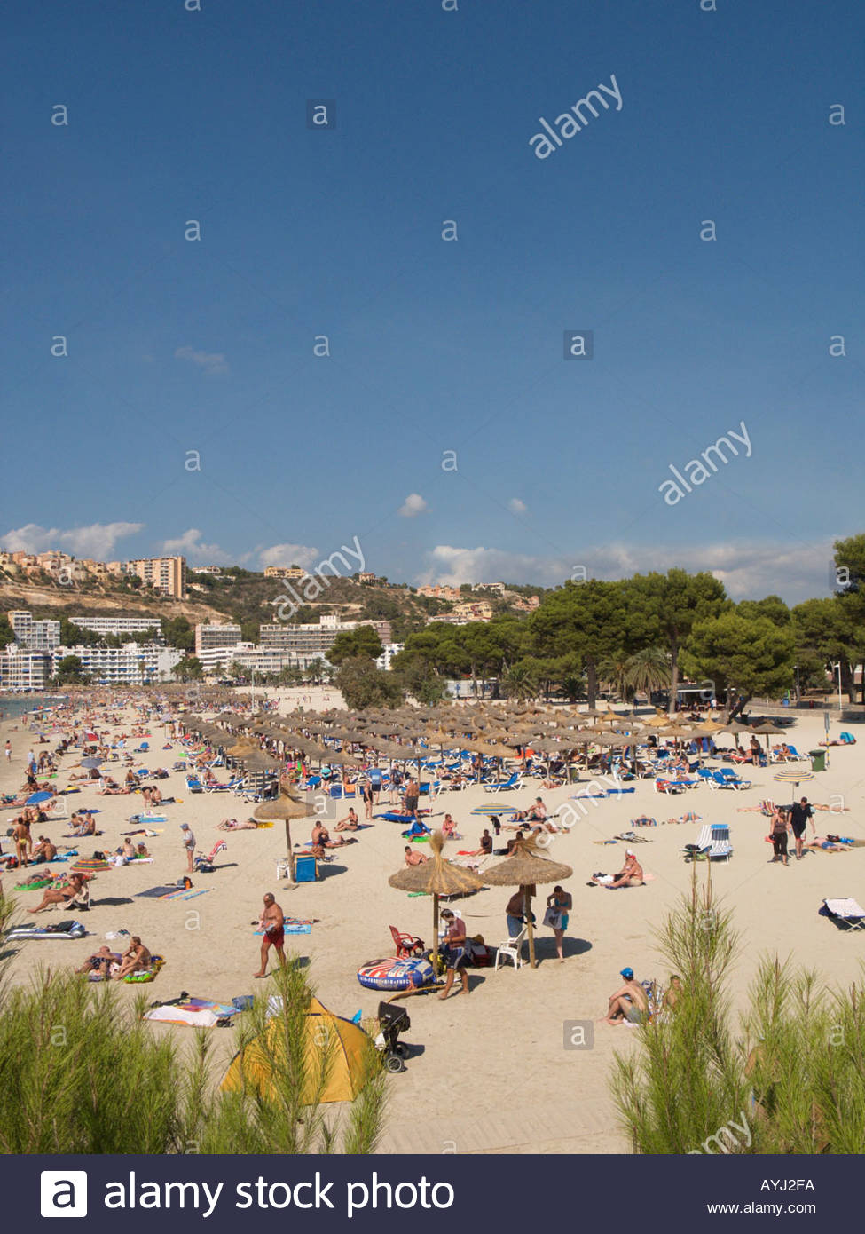 Trh Jardin Del Mar Élégant Santa Ponsa Bay and Beach Scene Ponent Region Majorca Spain